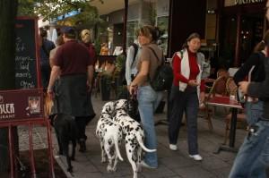 Im der Berliner Innenstadt