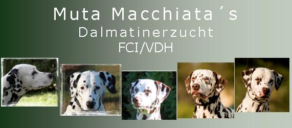 La Muta Macchiata - Homepage